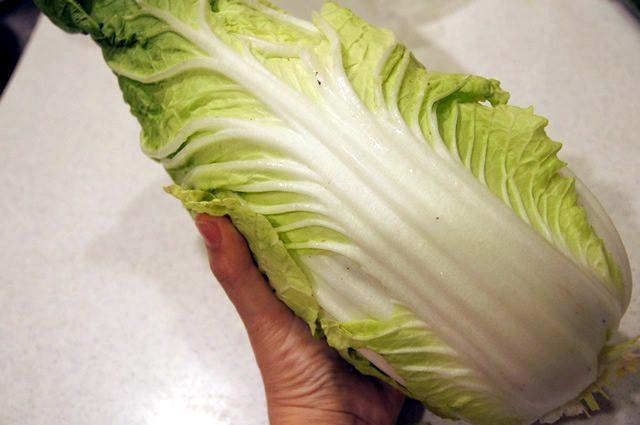 オイシックス お試しセット 特においしかった白菜