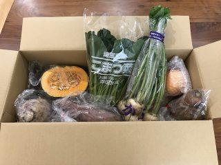大地を守る会お試しセット野菜・果物7品
