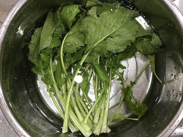 大地を守る会お試しセット野菜果物7品かぶの葉