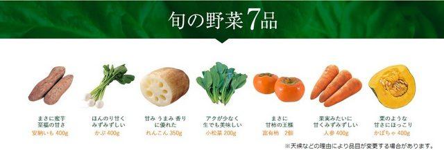 大地を守る会 お試しセット 旬の野菜7品