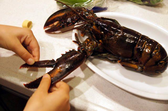 テイスティーテーブル tastytable 特別メニューのオマールエビ