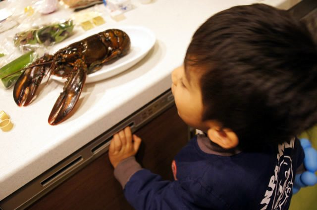 テイスティーテーブル tastytable特別メニューを見る息子
